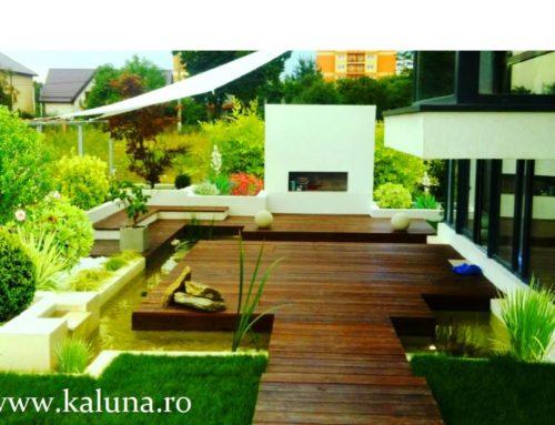 Imagini din diferite proiecte Kaluna